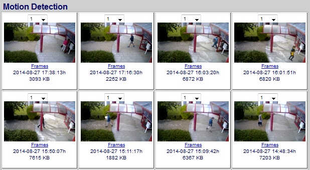 Video Surveillance Motion Snapshot Preview